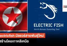 Electricfish