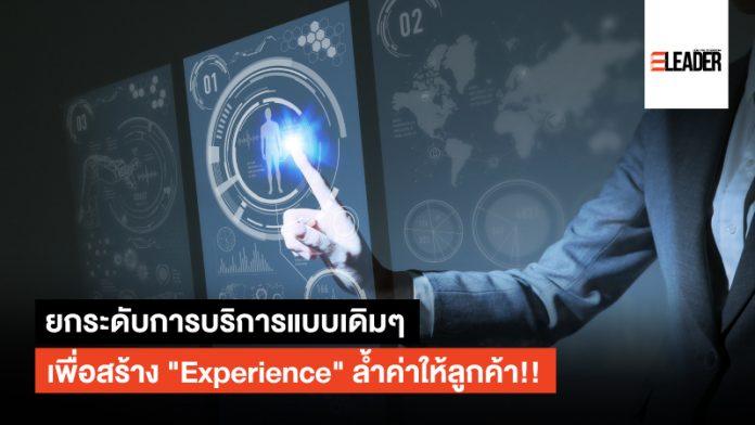 ประสบการณ์